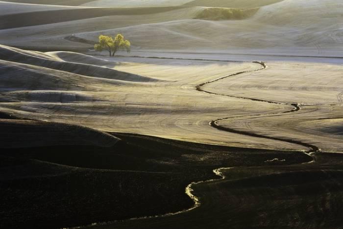 Изумрудные холмы Палуз