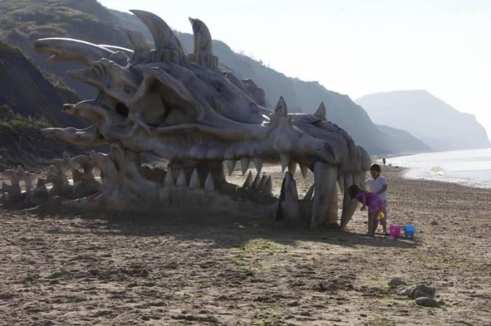 На пляже Британии обнаружили голову дракона (5 фото)