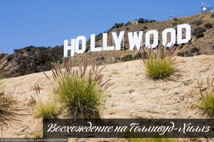 Восхождение на Голливуд-Хиллз (41 фото)