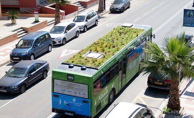 Автобус с клумбой на крыше (7 фото)