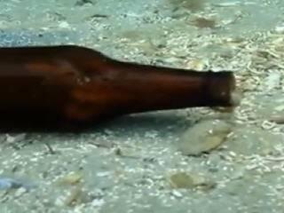 Осьминог в бутылке