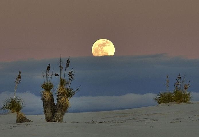 Самая необычная пустыня в мире - Пустыня Белых Песков (14 фото)