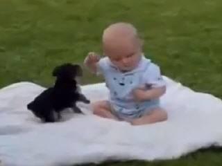 Малыш играет со щенком