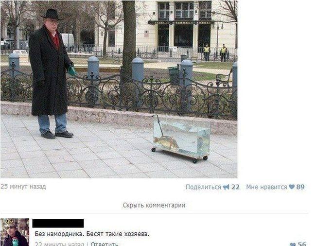 Смешные комментарии из социальных сетей (37 скриншотов)