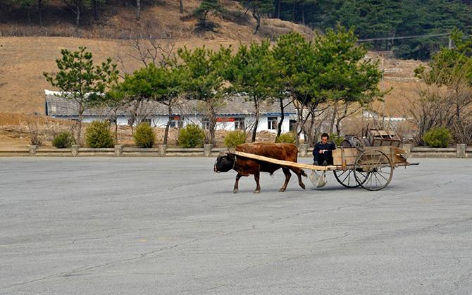Северная Корея (21 фото)