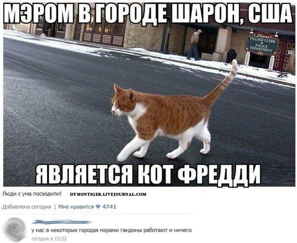 Смешные комментарии из социальных сетей (40 фото)