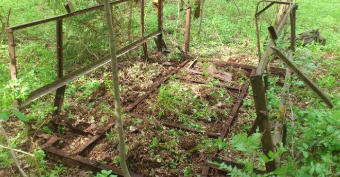 Очередной выход в лес за хабаром (59 фото)