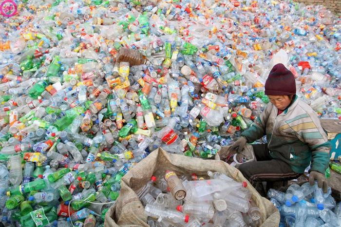 Сроки разложения мусора в фотографиях (18 фото)