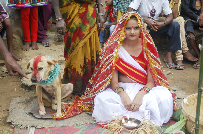 Девочку выдали замуж за собаку (6 фото)