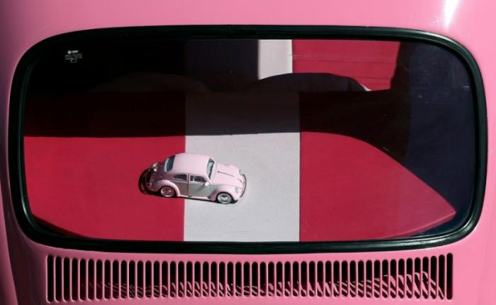 Cобрание владельцев VW Beetle в Бразилии (13 фото)