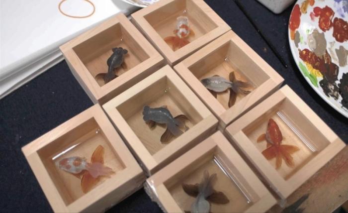 Трехмерные изображения животных (13 фото)