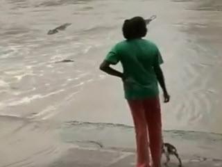 Как напугать крокодила