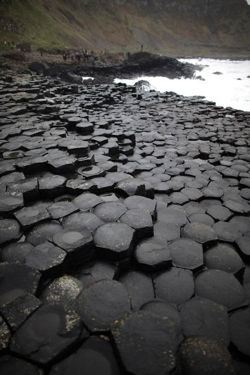 Дорога гигантов (14 фото)