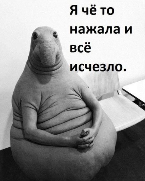 Новый мем «Ждун» стал героем шуток и фотожаб (11 фото)