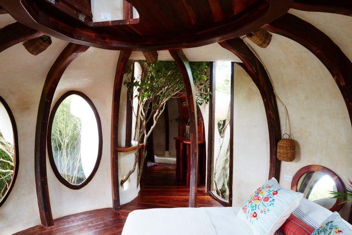 Мексиканский отель предлагает номер на дереве (11 фото)