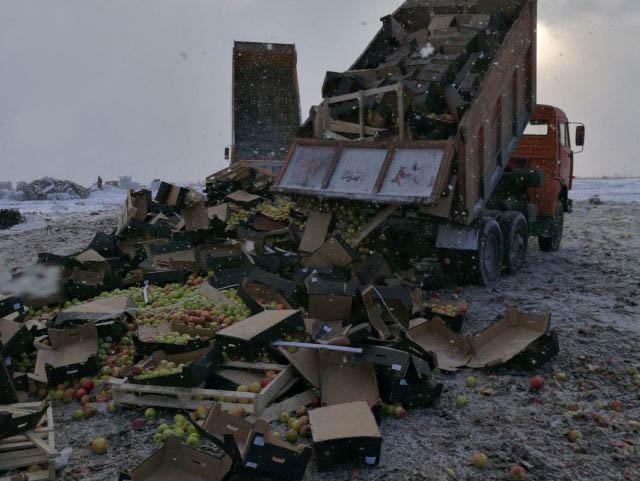 Уничтожение белорусских яблок в Тверской области (2 фото)