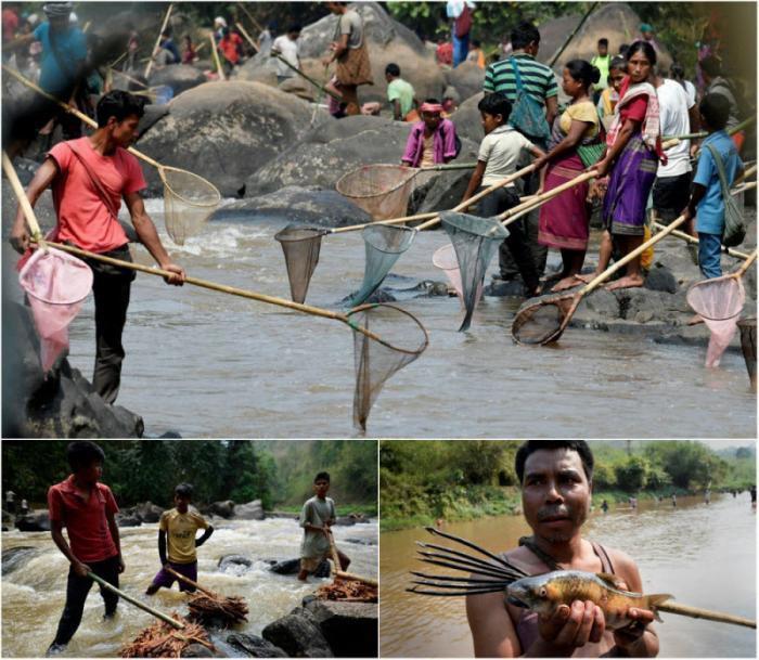 Традиционная ловля рыбы в индийской реке (12 фото)