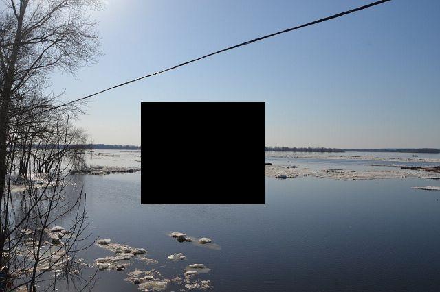 В Самаре вместо со льдом уплыло и популярное заведение (3 фото)