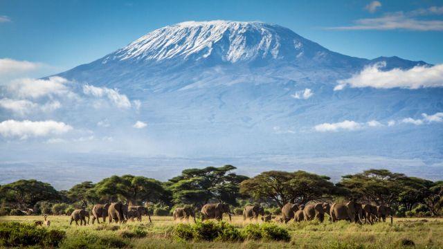 7-летний альпинист покорил высочайшую точку Африки (4 фото)