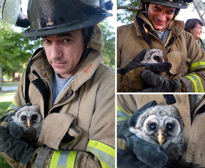 Австралийские пожарные показали миру результаты их работы (30 фото)