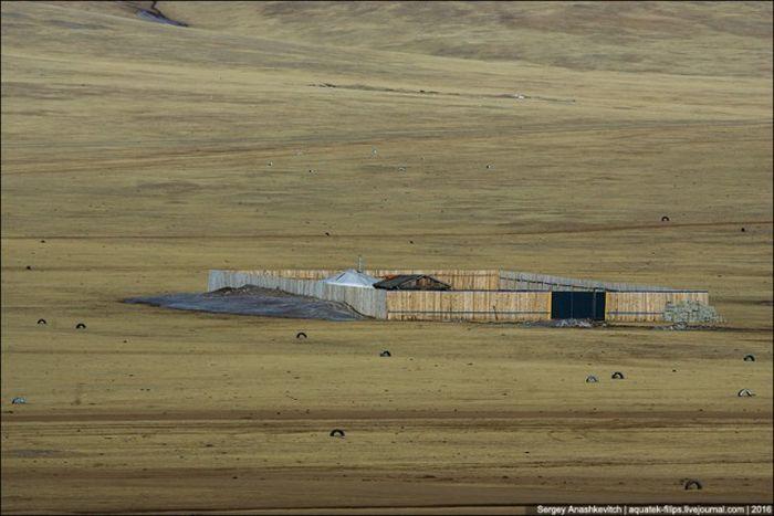 Для чего монгольские кочевники строят забор (3 фото)
