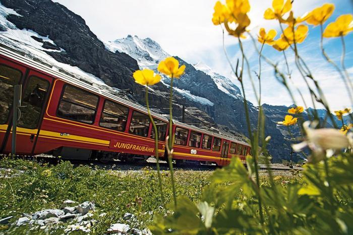 Как швейцарские поезда изменили мое представление об отдыхе (11 фото)