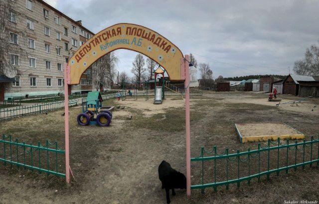 В Томской области появилась депутатская детская площадка (4 фото)