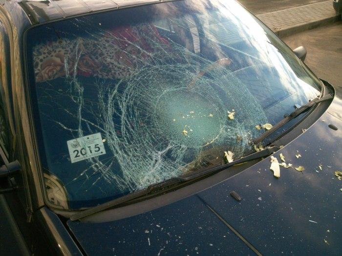 Припаркованный автомобиль атаковали с воздуха (10 фото)